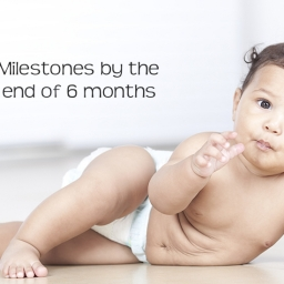 Milestones for Babies and Infants by the end of 6 months