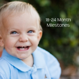 Developmental Skills for Toddlers 18-24 Months Old 18 mo - 2 years Milestones