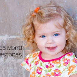 Developmental Milestones Skills for 24-36 Months