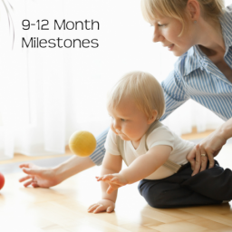 Developmental Skills for Infants and Babies 9-12 Months