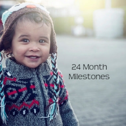 Milestones for Toddlers by the end of 24 months 2 Years